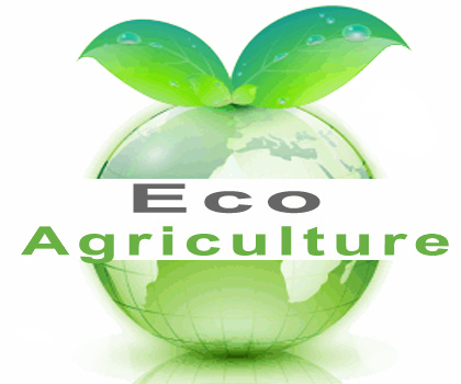 Eco Agriculture Community Eco Living