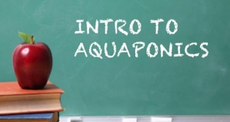 Intro to Aquaponics